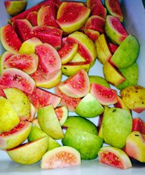 Guava Season