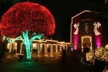 La grotta Festa di Natale delle Luci