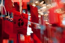 Año Nuevo chino en Calgary