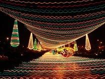 Luzes de Navidad (Alumbrados Navideños) en Medellín