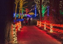 Winter Walk of Lights at Meadowlark Botanical Gardens