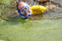 Irish Bog Snorkelling Championship