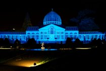 Enchanted Woodland at Syon Park