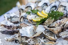 Saison des huîtres
