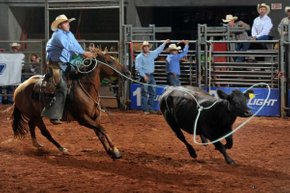 Texas Ranch Roundup