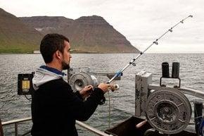 Sea Angling