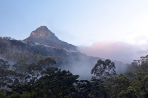 Adam's Peak Pilgrimage