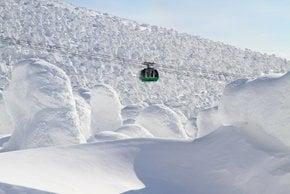 Monstruos de la nieve de Zao