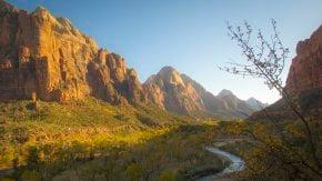 Colores de otoño del Parque Nacional de Zion