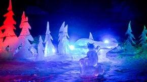 Festival de Luz de Zoominescência