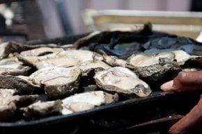 Festival de Oyster de Nueva Orleans