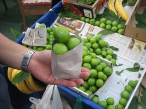 Green Plums or Erik