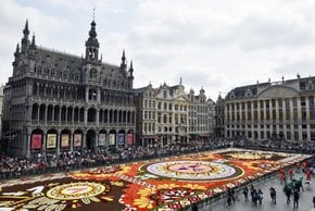Flower Carpet & Flowertime