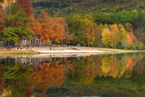 Fall Foliage in Alabama