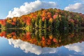Foglie d'autunno del Vermont