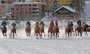 Turf Bianco St. Moritz