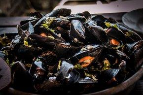 Mussels Season