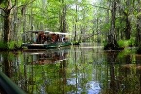 Excursões de pântano