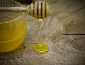 Dégustation de miel