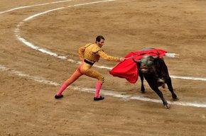 Bailes de toros