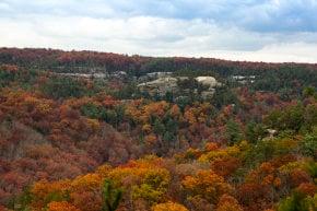 Colores de otoño de Kentucky