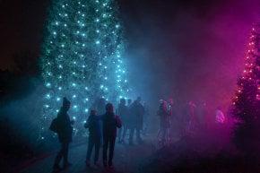 Luci di Natale a Chicago