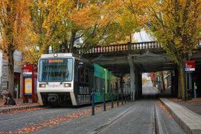 Portland Fall Colors