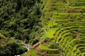 Banaue and Batad Rice Terraces