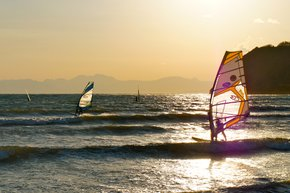 Surfing & Windsurfing