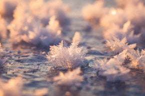 Frost 'Flowers'