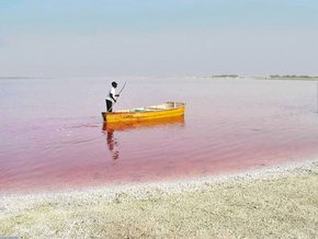 Pink Lake Retba