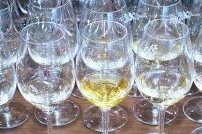 Vinistra, Croatian Wine Festival