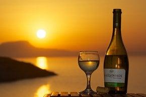 Winemaking Season