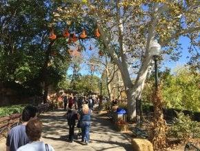 St. Louis Halloween Events