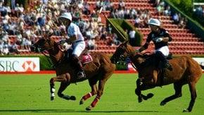 Campeonato Argentino Abierto de Polo (Argentine Polo Open Championship)