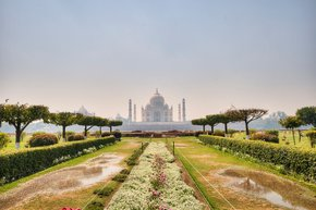 Gardens of Agra after the Monsoon