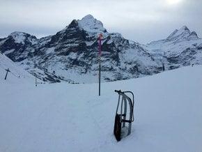 Faulhorn-Grindelwald Toboggan