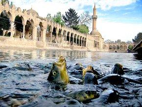Balıklı Göl (Abraham Pool)