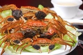 Hairy Crabs Season