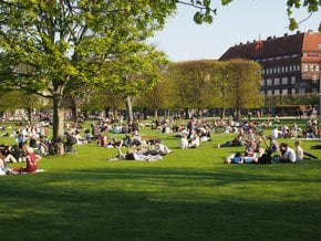 Picnic in the King's Garden (Kongens Have)