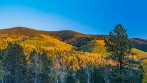 Breckenridge Fall Colors