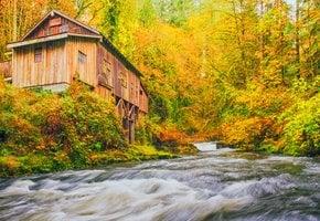 Colores del otoño de Washington