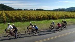 Biking in Napa Valley