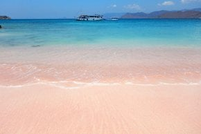 Playa Rosa, Isla Komodo
