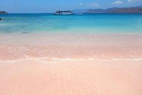 Pink Beach, Komodo Island