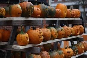 NH Pumpkin Festival