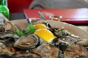 Knysna Oysters