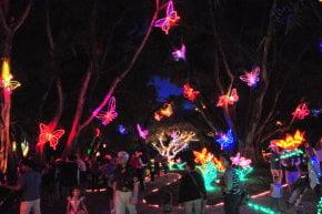 Luzes de Natal em Sarasota