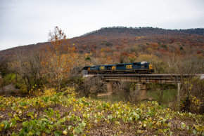 Chattanooga Fall Colors