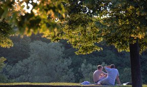 Picnic in the West Park